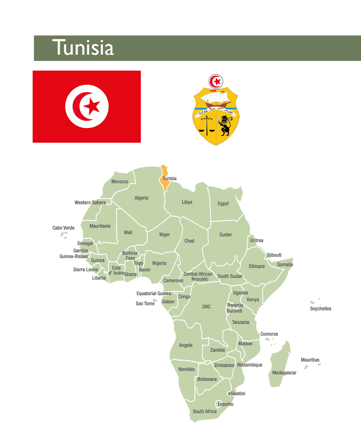 Tunisia - CAHF | Centre for Affordable Housing Finance Africa
